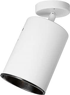 Progress Lighting P6397-30 Directional Heat Lamp, White