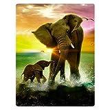HommomH 30'x40' Blanket Soft Fluffy Flannel Fleece Throw Seaside Elephants