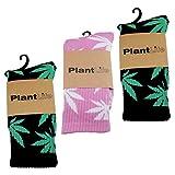 Plantlife® Socken Hanf Socks in universeller Größe, Unisex 2X schwarz/grün 1x pink/Weiss