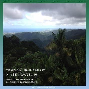 Tropical Rainforest Meditation