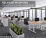 eSmart Germany elektrisch höhenverstellbarer Schreibtisch | Mit Holz-Tischplatte aus Ahorn Dekor und Tischgestell | 120 x 60 cm - 5