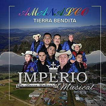 AMANALCO TIERRA BENDITA