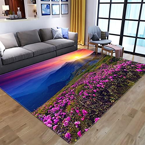 Creativity Flowers 3D Digital Printed Carpet, Kids Room Play Area Rugs Hallway Floor Mat Home Decor Large Carpets For Living Room 80X120Cm