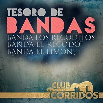 Club Corridos: Tesoro de Bandas - Banda el Recodo, Banda los Recoditos, Banda el Limon