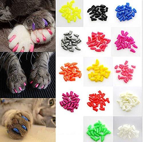 Brostown 100Pcs Soft Pet Cat Nail Caps Claws Control Paws of 5 Kinds 5Pcs Adhesive Glue + 5pcs Applicator