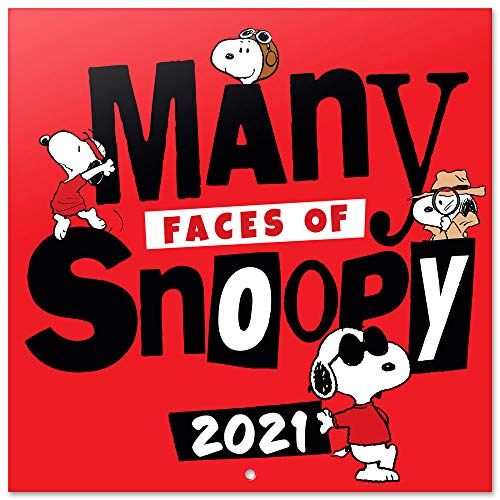 Grupo Erik Calendario 2021 da Muro Snoopy, calendario peanuts 2021, calendario snoopy 2021, 12 mesi, include poster regalo, 30x30 cm