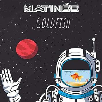 Goldfish (Radio Edit)