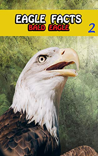 Eagle Facts: Bald Eagles Books For Kids Series For Girls or Boys Ages 4-8 - Animal Fun Facts Book 2 (English Edition)