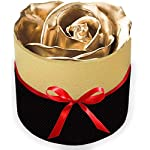 forever rose real preserved rose in gift box – beautiful rose valentines day gift romantic (gold)