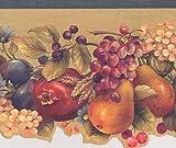 Flores Frutas Bayas de vid floral moderno cenefa de papel pintado, diseño retro, rollo 15