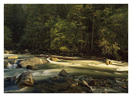 Obras de Arte Italia Río Merced que fluye por el suelo del valle, Parque Nacional de Yosemite, California-Papel Art-18'x14'
