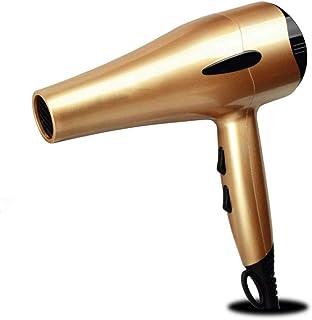 TTEWS Salon Grade Professional Hair Dryer Secador de Pelo iónico de cerámica iónico Negativo con 2 velocidades y 3 configuraciones de Calor Botón de Disparo frío, difusor y concentrador