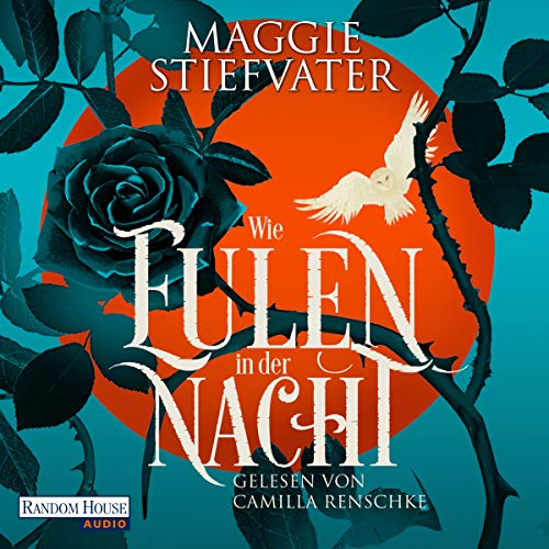 Wie Eulen in der Nacht audiobook cover art