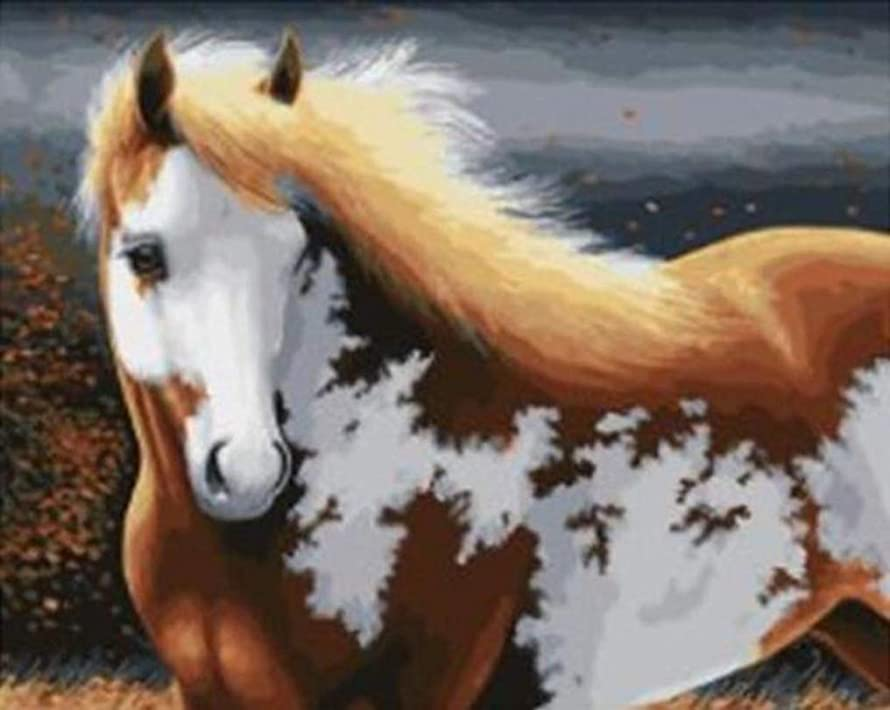 LoveTheFamily Horse Paint by Numbers Kits DIY Digital Oil Painting Coloring On Canvas Hand Painted Painting by Handmade with Brushes and Acrylic Pigment ( Frameless, 16x20-inch ) etiviry5490963