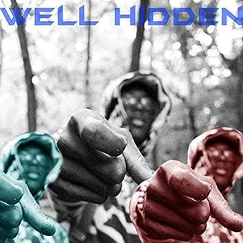 Well Hidden