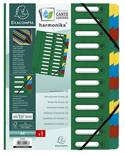 Exacompta 55243E Premium Ordnungsmappe Harmonika aus extra starkem Colorspan-Karton mit dehnbarem Rücken DIN A4 24 vollfarbige Fächer mit 2 Gummizügen und Indexfenstern, grün