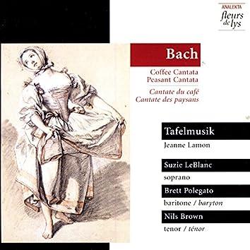 Bach: Coffee Cantata, Peasant Cantata