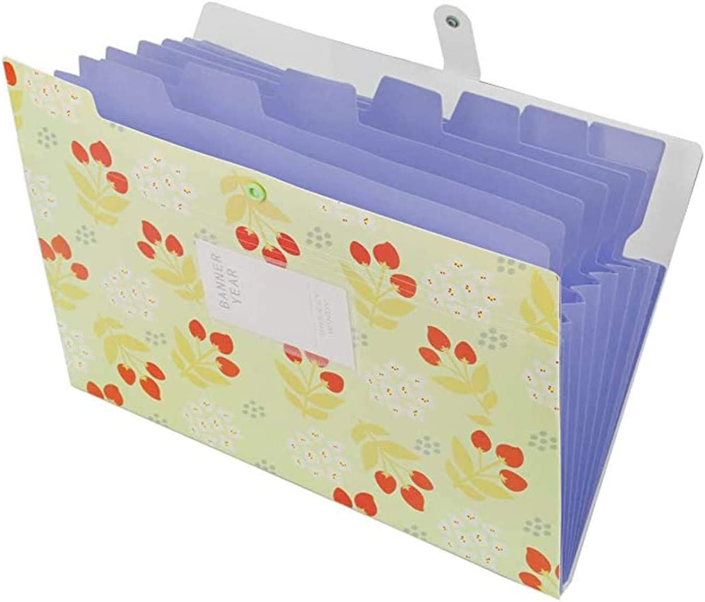 Easytoy Expanding Super sale File Folder with Pockets 8 Plastic Today's only A Organizer