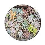 Alfombrilla de ratón de cactus para computadoras, pequeñas plantas de jardín suculentas dispuestas en el suelo, colorida foto de flora tropical, redonda, antideslizante, de goma gruesa, moderna alfomb