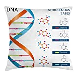 RAINNY Throw Pillow Covers, Dna Bases Chemistry Biochemistry Biotechnology Science Spiral Symbol Genetic,Decorative Cover Sets for Pillows 20x20 Inches