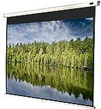 celexon manualmente Extensible Pantalla para Cine en casa y Negocios 4K y Full-HD Enrollable...