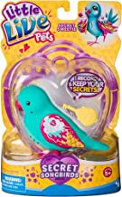 Little Live Pets Bird - Secret Sweetie