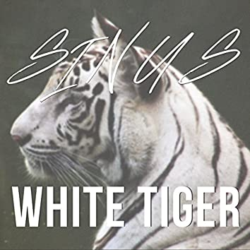 White Tiger - Original Mix