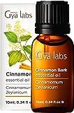 Gya Labs Olio Essenziale di Corteccia di Cannella per Dolore Muscolare - Olio di Corteccia di Cannella Puro per Salute - 100 Naturale Olio Essenziale Cannella per Diffusori Aromaterapia - 10ml