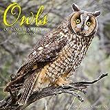 Owls 2021 Wall Calendar