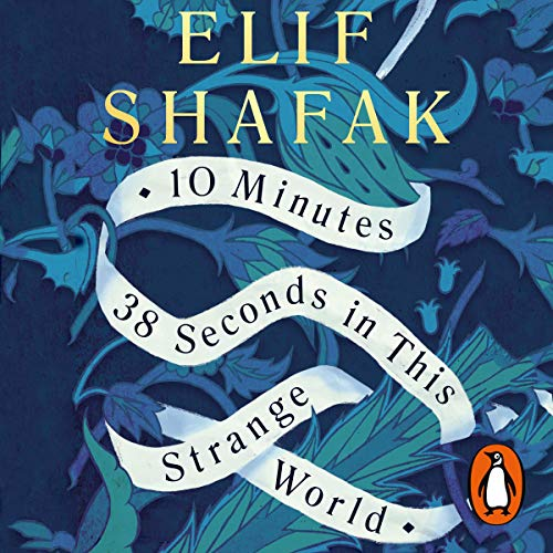 Couverture de 10 Minutes 38 Seconds in This Strange World