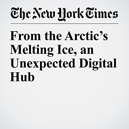 From the Arctic's Melting Ice, an Unexpected Digital Hub copertina