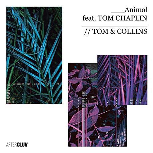Tom & Collins feat. Tom Chaplin