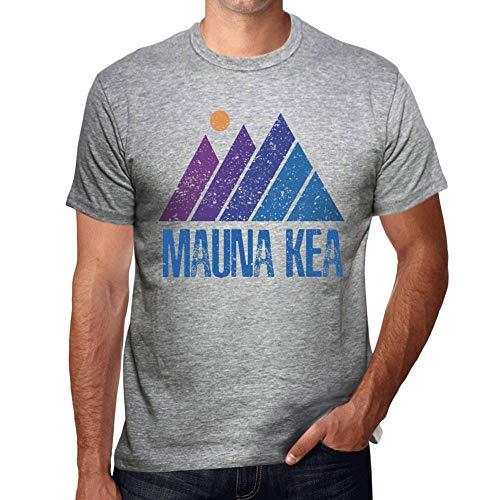 Herren Grafik Tee Shirt Berg Mauna KEA Grau Meliert
