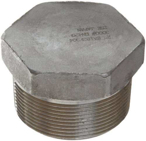 Stainless Steel 304 Pipe Fitting, Hex Head Plug, Class 1000, 2-1/2