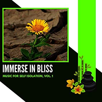 Immerse In Bliss - Music For Self Isolation, Vol. 1