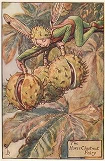 Horse Chestnut Fairy by Cicely Mary Barker. Autumn Flower Fairies - c1935 - Old Print - Antique Print - Vintage Print - Printed Prints of Flower Fairies