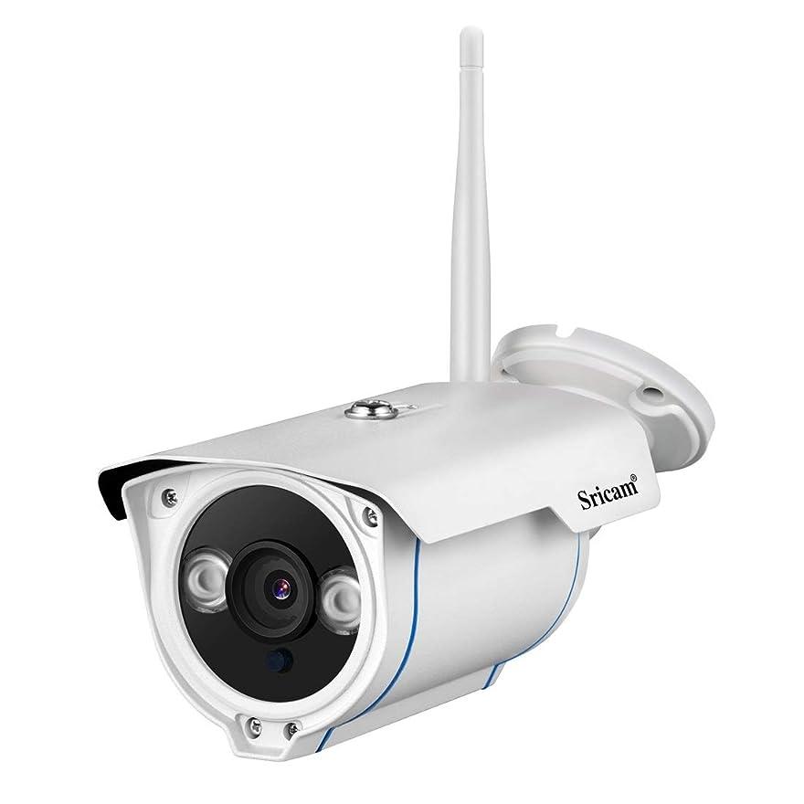 驚いたスキムキャッチ方朝日スポーツ用品店 屋外HD防水監視カメラ1080 P赤外線ワイヤレスウェブカメラ