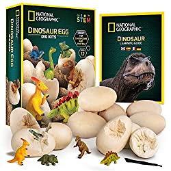 4. NATIONAL GEOGRAPHIC Dinosaur Dig Kit