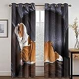 Epinki Cortinas para Dormitorio Juvenil Perro Shar Pei Negro Marrón Cortina Poliester, Disponible en 21 Tamaños, Talla 214x183CM