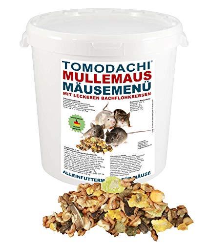 Tomodachi Mäusefutter mit tierischen Proteinen, Mäusenahrung, Naturfutter, artgerechte Hauptmahlzeit für die Maus mit leckeren Bachflohkrebsen, Komplettnahrung für Mäuse Mäusefutter 2kg Eimer
