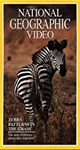 National Geographic Video: Zebra: Patterns in the Grass VHS