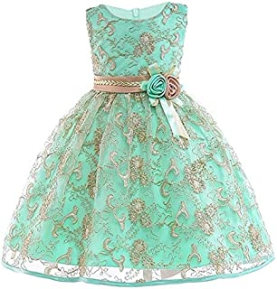 Kids Clothing Girls Gold Silk Embroidery Sleeveless Dress Wedding Dress, Size:120cm(Red) Boys Clothing (Color : Apple Green)