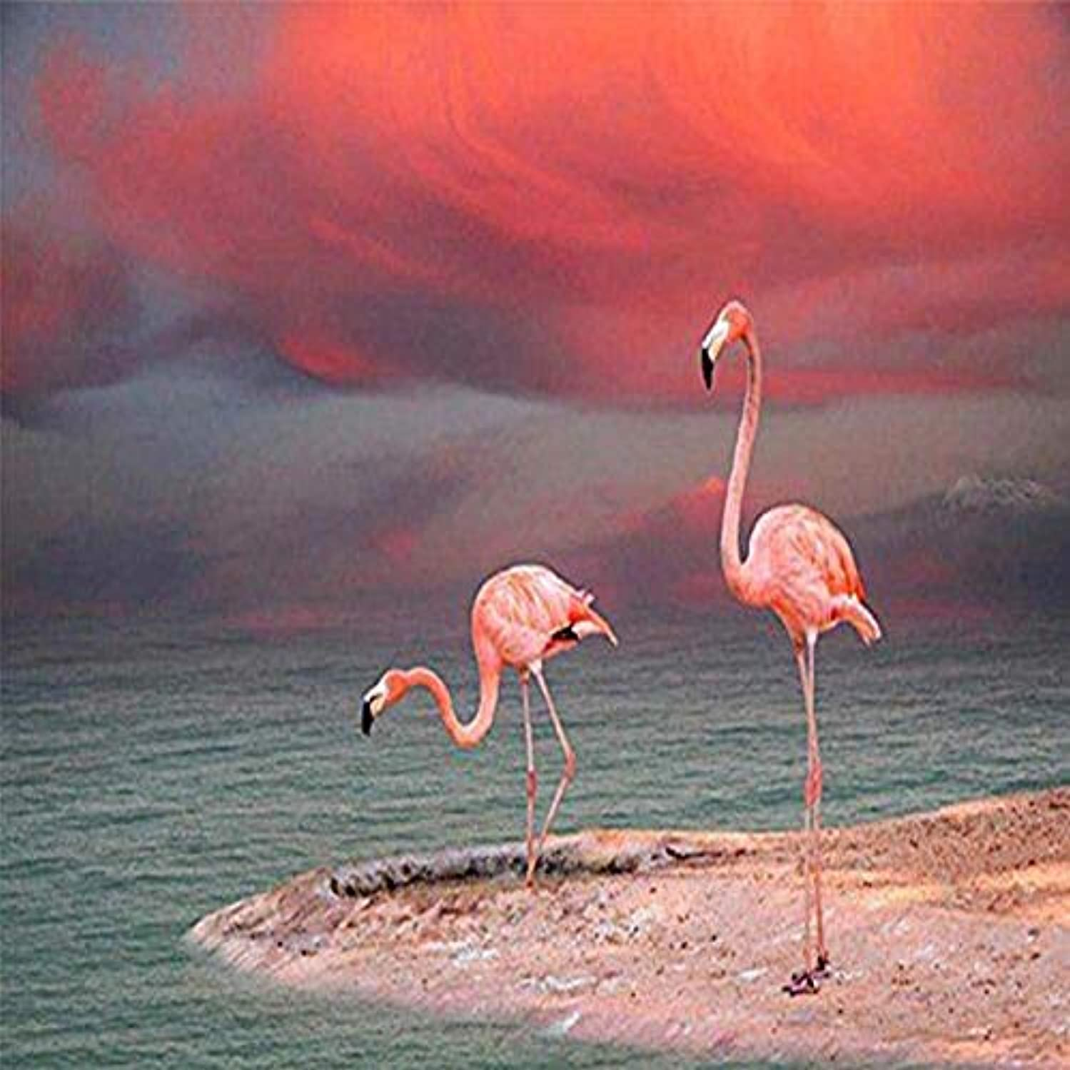 DIY 5D Diamond Painting by Number Kits, Crystal Rhinestone Diamond Embroidery Paintings Pictures Arts Craft for Home Wall Decor, Full Drill,Seaside Flamingos 12X12 inch