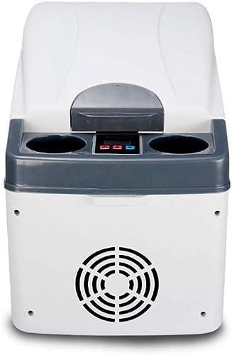 Dhrfyktu Glacière et réchaud électrique pour voiture et maison - Réfrigérateur 20L, mini glacières de camping portables (Couleur   gris)