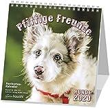 Pfiffige Freunde 2020: Postkarten-Kalender