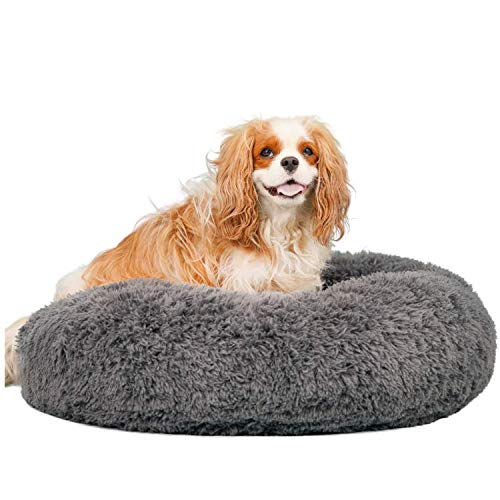 Alpha Paw Cozy Calming Dog Bed for Small Dogs, Anti Anxiety, Comfy, Fluffy, Ultra Soft, Round Pillow Donut Pet Bed for Dogs (Medium 26', Grey)…