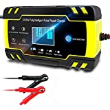 Car Battery Charger, 12V/24V 8A Intelligent Automatic Battery Charger Maintainer with LCD Screen
