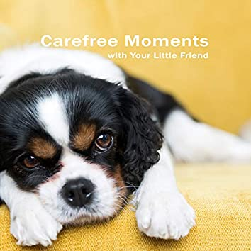 Carefree Moments with Your Little Friend. Play & Relaxation with Your Pet.