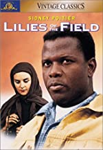 Best images of lilies of the field Reviews