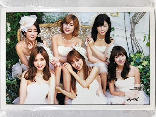 Apink エーピンク グッズ / ポストカードサイズ フォトスタンド 15枚セット - Photo Stand 15sheets [TradePlace K-POP 韓国製]